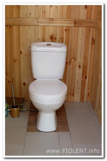 Ирина. Туалет во дворе