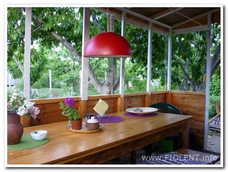 Ирина, дом. Кухня, она же столовая.