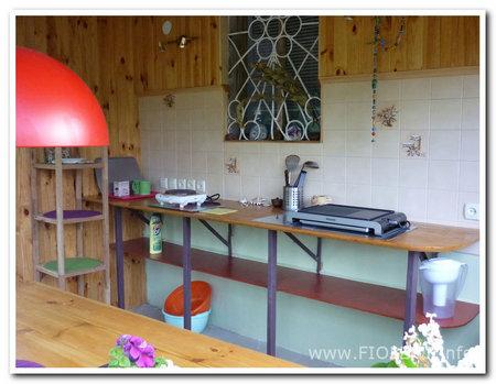 Ирина, дом. Кухня, она же столовая, рабочее пространство.